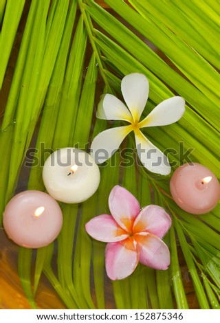 Two frangipani flowers and three candle with palm leaf - stock photo