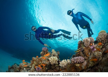 Two free divers swimming over vivid coral reef in the Red Sea. Egypt - stock photo