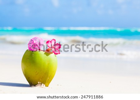 two fresh coconut cocktail on tropical beach with flower - stock photo