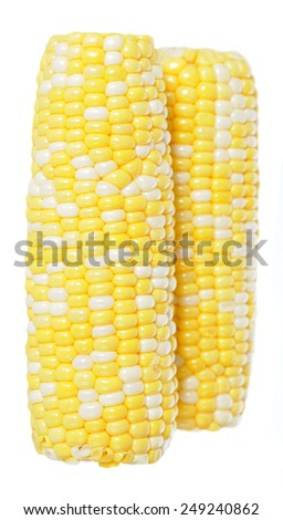 two fresh  corns in cob  isolated on white background