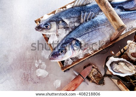 Two fresh Mediterranean sea bass or Loup de Mer on ice in a wooden basket alongside fresh oysters on a table, overhead with copy space - stock photo
