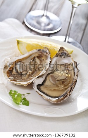 Two fresh oysters platter served with white wine - stock photo