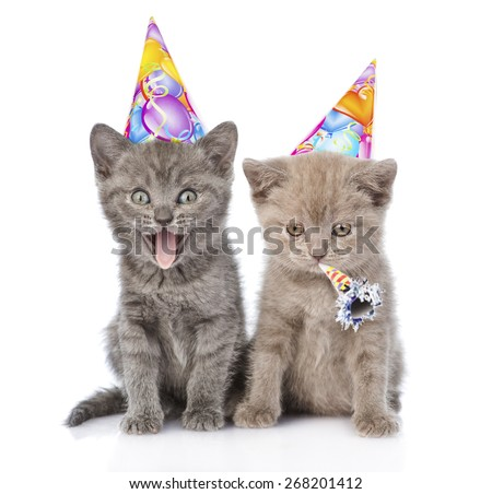 Two funny kittens with birthday hats. isolated on white background - stock photo