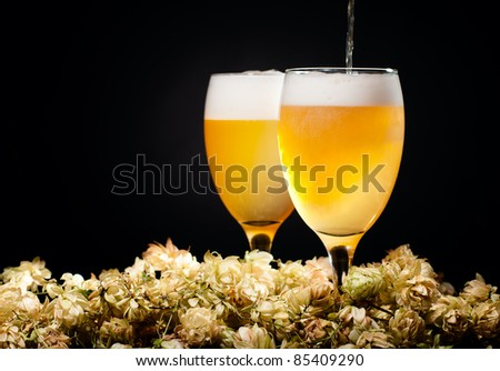 Two glasses of beer flow with hop over black