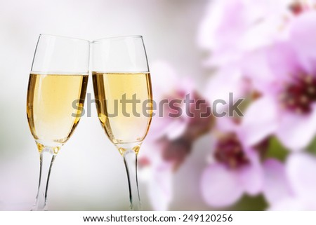 Two glasses of champagne over beautiful background of pink spring flowers