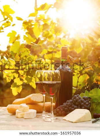 Two glasses of red and white wine, bottle, cheese and baguette - stock photo