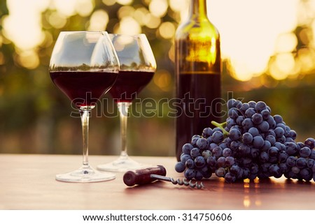 Two glasses of red wine with food at sunset, toned - stock photo