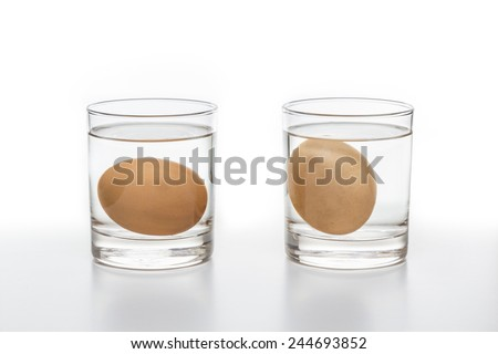 Two glasses of water with a fresh egg on the left and a rotten egg on the right side isolated on white background - stock photo