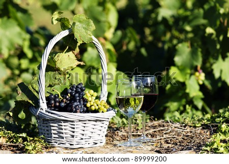 two glasses of wine and grapes in a basket in autumn - stock photo