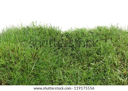 Two Grassy Hills Isolated on White Background - stock photo