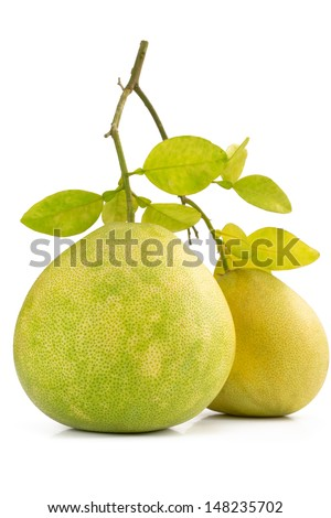 Two Green pomelo fruit on one branch, isolated on white Backgorund - stock photo