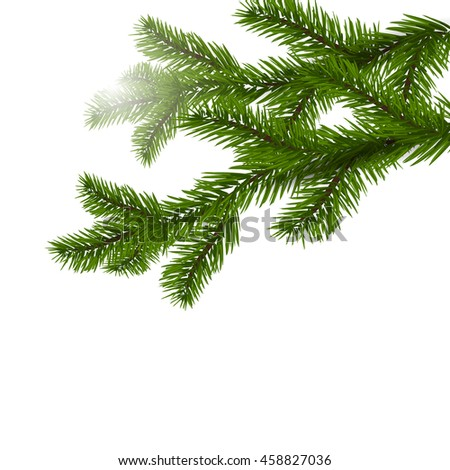 Two green spruce branches realistic. Christmas Spruce branches. Isolated on white Christmas raster illustration