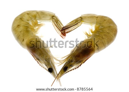 Two grey prawns forming a heart shape isolated on white background