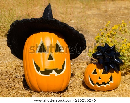 Two Halloween pumpkins in the park - holiday concept