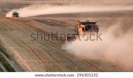 Two harvesters on the field working - stock photo