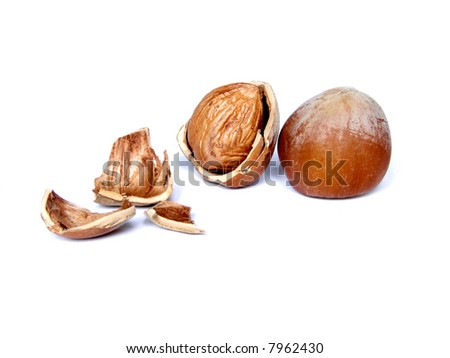 Two hazelnuts isolated on white