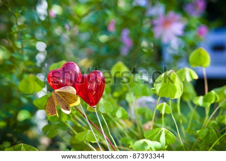 Two hearts between clover - stock photo
