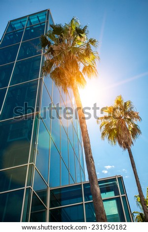 Two high palm trees growing next to modern skyscraper of concrete and glass - stock photo