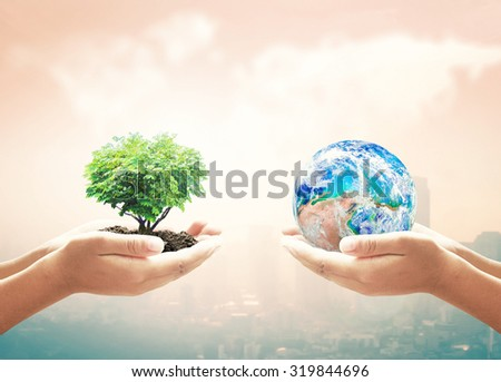 Two Human Hand Holding Planet & Heart Shape Big Tree. Ecology CSR Earth Hour Recycle Arbor Idea Team Unity Globe Plant Spring Healthy Life Capital Synergy. Elements of this image furnished by NASA - stock photo