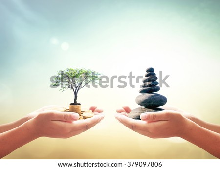 Two human hands holding big tree with coins and balance stones on nature background. World Philosophy Day Business Education development Plan Investment Money ROI Fund Insurance Agent Barter concept - stock photo