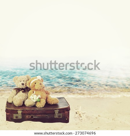 Two in love teddy bears sit on a suitcase. holiday concept - stock photo