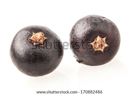 Two Juniper berries isolated on white background, closeup, macro - stock photo