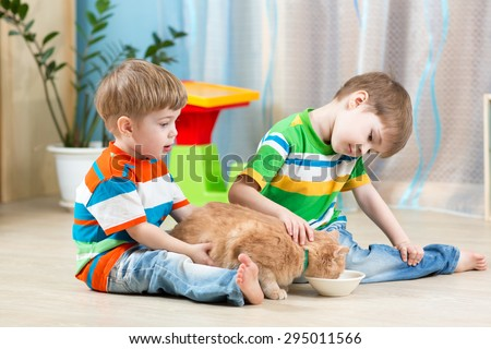 two kids boys feeding cat indoors - stock photo