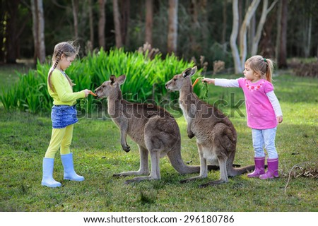 Two kids in the zoo feeding kangaroo - stock photo