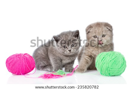 two kittens playing with a ball. isolated on white background - stock photo