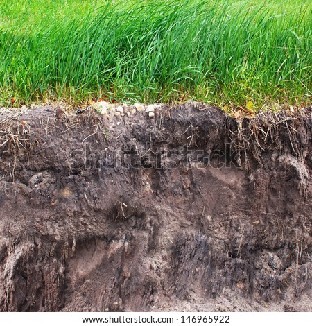 Two levels of grass and soil - stock photo