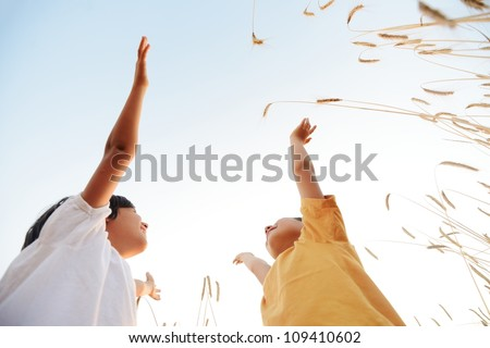 Two little boys at wheat field together - stock photo