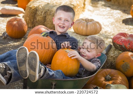 Two Little Boys Playing in Wheelbarrow at the Pumpkin Patch in a Rustic Country Setting.