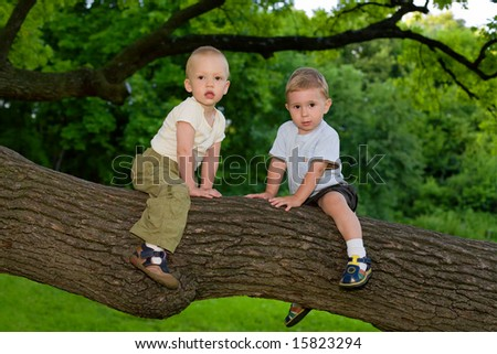 Two little boys sitting on the oak's branch - stock photo