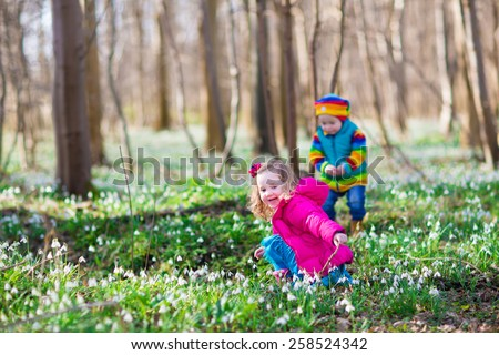 two little children, cute toddler girl and funny baby boy, brother and sister, playing in a sunny forest with beautiful spring snowdrop flowers - stock photo