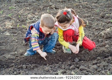 Two little children planting seeds on the field, outdoors - stock photo
