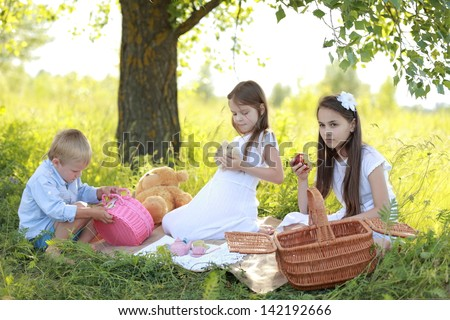 Two little girls in summer clothes boy playing with toys on a picnic in the summer field with wild flowers