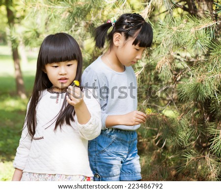 Two little girls pick wild flowers on the grass