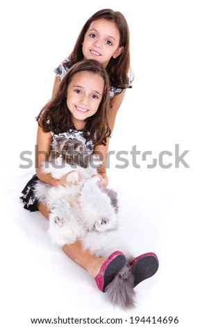 Two little kid girls showing love to their persian kitten - stock photo