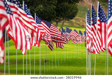 Two long rows of American Flag on a green grass yard blow in the wind