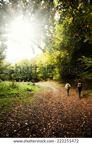 Two man walking in autumn forest - stock photo