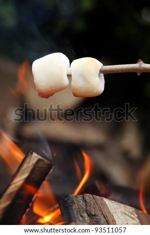 Two marshmallows roasting on the camp fire and getting nicely golden brown. - stock photo
