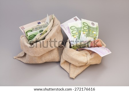 Two Money bags with euro isolated on gray background - stock photo