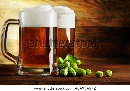 Two mugs of beer and hop on a wooden table