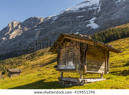Two old wooden cabins in Switzerland Alps with Eiger and snow in a meadow with evening light.
