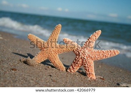 Two On The Beach - stock photo