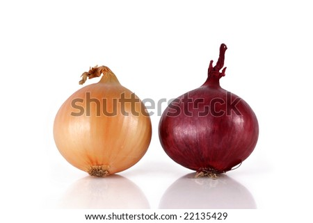 two Onion isolated on white background