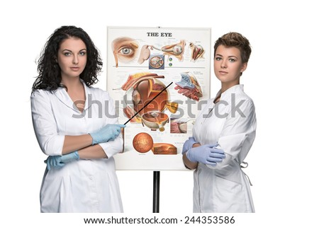 two optician or oculist women telling about structure of the eye - stock photo