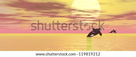 Two orcas leaving to the sun by cloudy weather - stock photo
