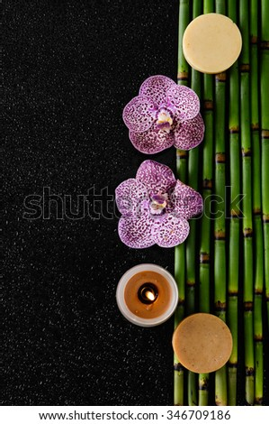 Two orchid and bamboo grove, candle on black background   - stock photo