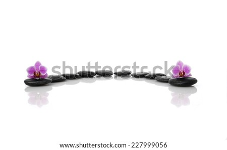 Two orchid with set of black stones - stock photo